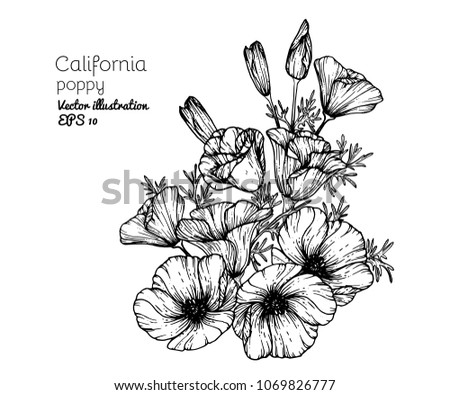 2090 flower clip art vectors download free vector art graphics premium vectors sponsored results by shutterstock mightylinksfo