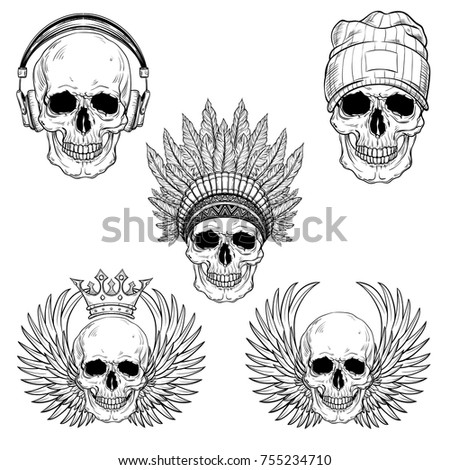 hand drawn anatomy skull set