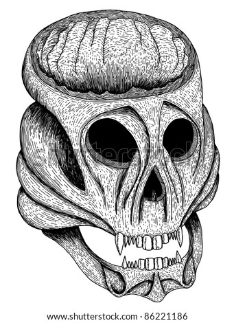 Hand drawn and sketched skull