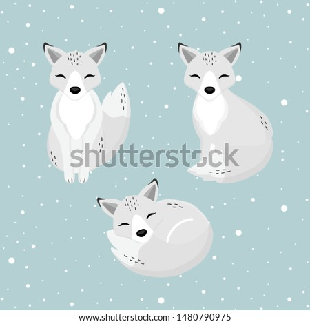 hand drawn arctic fox in the