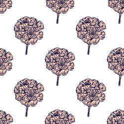 Hand- drawn astra flowers seamless pattern on white background for fabric or surface design.