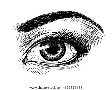 hand drawn beautiful female eye
