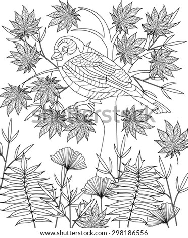 hand drawn bird coloring page