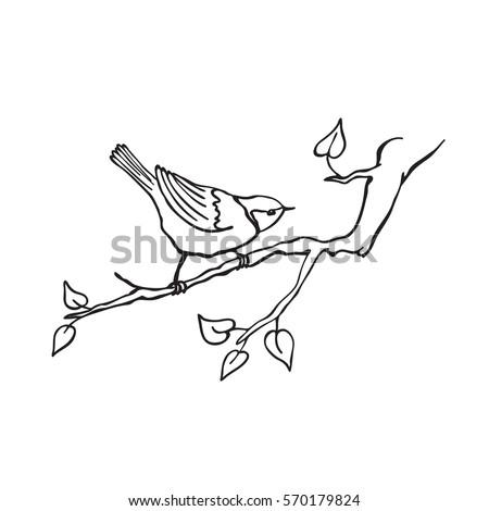 hand drawn bird sitting on