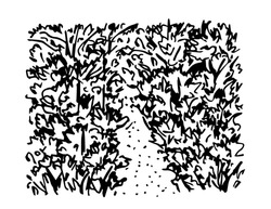 Hand-drawn black and white vector doodle drawing. Overgrown forest path, jungle, thickets of wild plants. Walk, exit, dead end.