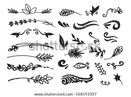 Hand drawn black floral elements on the white background. Floral decorative collection using for decoration of text, cards, invitation. Sketch of leaves and flowers.