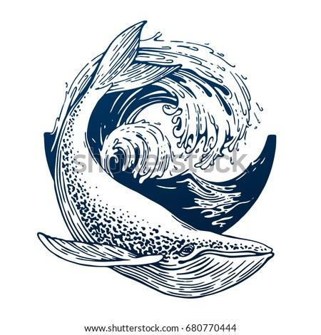 hand drawn blue whale vector...