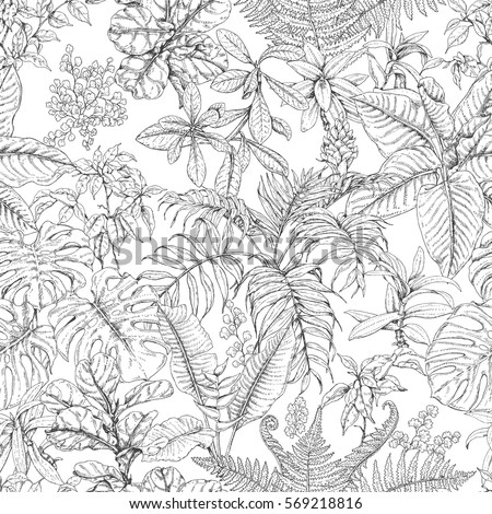 hand drawn branches and leaves