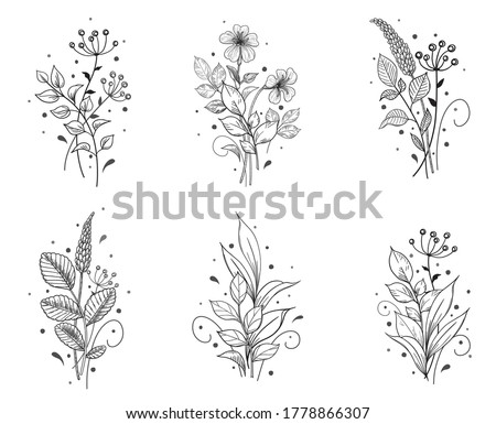 Hand drawn bunches set isolated on blank background. Black and white small flowers and leaves. Vector monochrome elegant floral composition in vintage style, tattoo design, template.