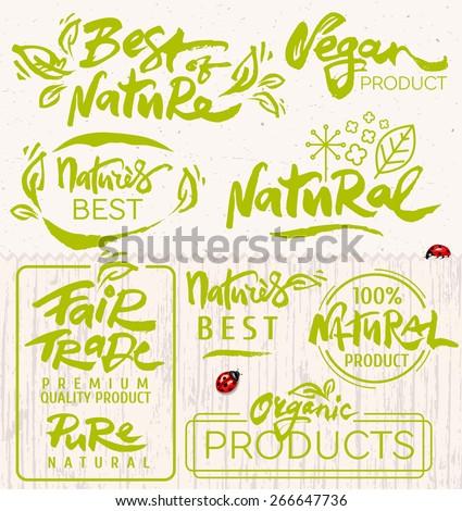 Hand Drawn Calligraphic Organic Icons Set