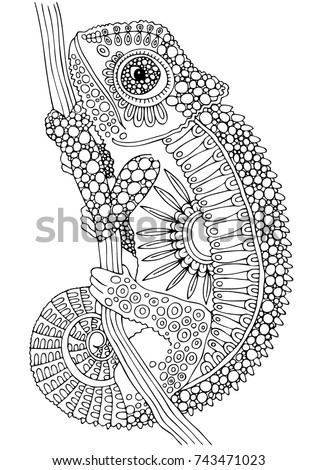 Hand drawn chameleon. Sketch for anti-stress adult coloring book in zen-tangle style. Vector illustration  for coloring page.