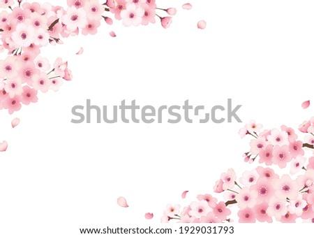 hand drawn cherry blossom frame