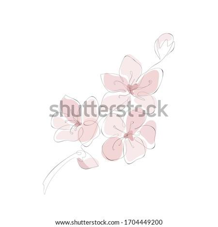 hand drawn cherry blossom pink