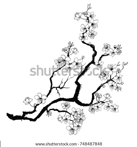 hand drawn cherry branches with