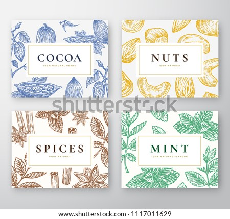 Hand Drawn Cocoa Beans, Mint, Nuts and Spices Cards Set. Abstract Vector Sketch Backgrounds Collection with Classy Retro Typography. Hand Drawn Cacao, Nuts, Mint Branches and Spices. Isolated.