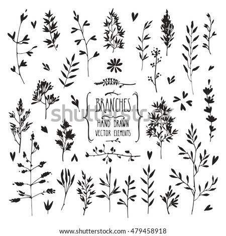 Hand drawn collection of rustic and floral design elements. Plants, flowers, leaves, tree branches silhouettes made with ink. Isolated vector set.