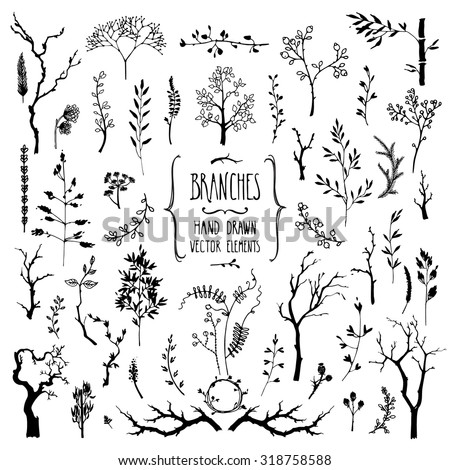 hand drawn collection of rustic
