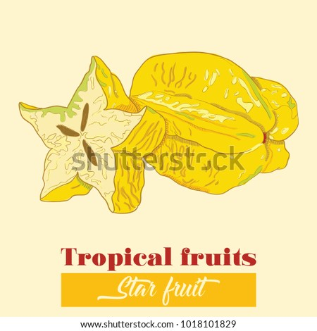 Hand Drawn Colorful Exotic Tropical Fruit Star Fruit