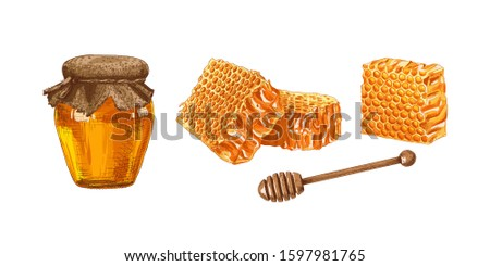 Hand drawn colorful honey jar, honey comb and wooden honey dipper isolated on white background. Vector illustration. Сток-фото ©