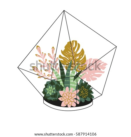 Hand drawn contained tropical house plants. Scandinavian style illustration, modern and elegant home decor. Vector print design with terrarium with tropical plants.
