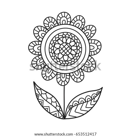 hand drawn contour flower for