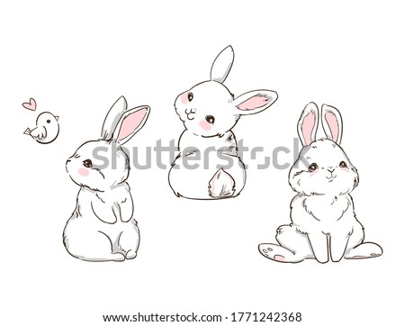 hand drawn cute bunny isolated