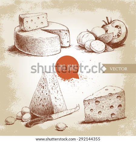 Hand drawn different type of cheese set. Edam, mozzarella cheese with basil leafs and tomato, round cheese head, triangle of cheese. Vector organic food illustration. Vintage design. Sketch style.