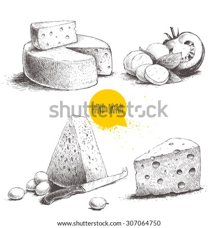 Hand drawn different type of cheese set. Edam, mozzarella cheese with basil leafs and tomato, round cheese head, triangle of cheese. Vector organic food illustration.