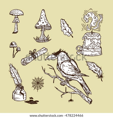 Stock Photo Hand Drawn Doodle Black Magic Vector Set. Raven, poisonous mushrooms, ancient paper scroll, candle, inkwell