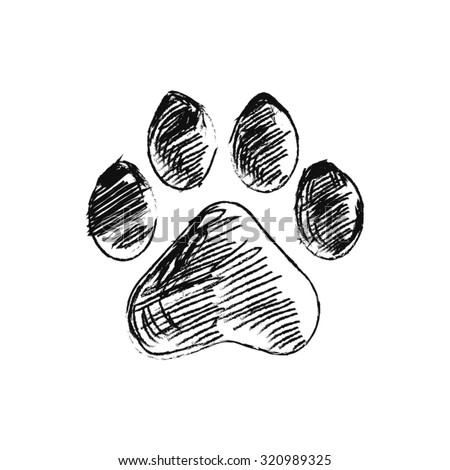 hand drawn doodle of animal footprint, Vector illustration.