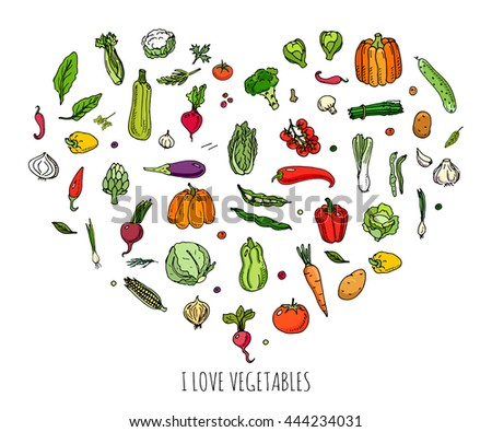 Hand drawn doodle vegetables icons set. Vector illustration seasonal harvest symbol collection Cartoon different kinds of fresh food Various type of vegan nutrition isolated on white background Sketch #444234031