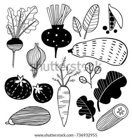 Hand drawn doodle vegetables. Sketch style vector set. Vegetables flat icons set: cucumber, carrot, onion, tomato.