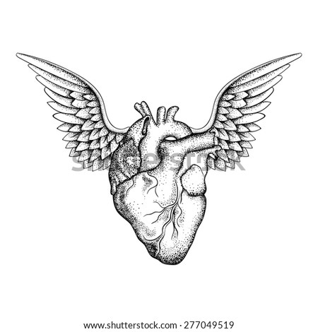 hand drawn elegant heart with