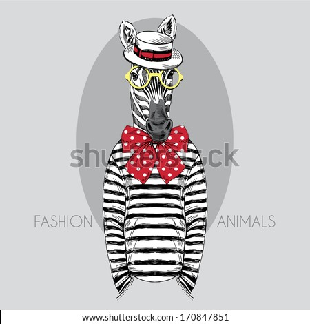 Hand drawn fashion illustration of dressed up zebra - stock vector
