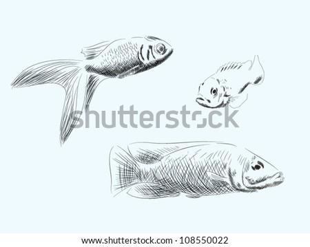 Hand drawn fish vector set