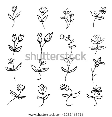 Hand drawn floral botanical plant doodle vector elements. Wild and free. Perfect for invitations, greeting cards, quotes, blogs, Wedding Frames, posters. Isolated - Vector eps