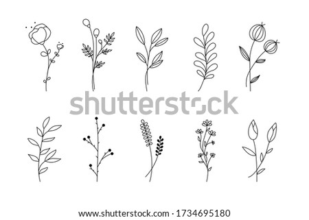 Hand drawn flower branch set. Simple floral graphic sketch with leaves sprig silhouettes, outline style isolated on white background. Vector illustration Stock photo ©
