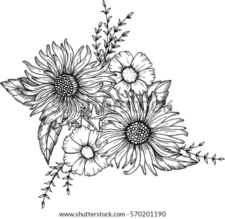 Hand drawn flower vectors free vector art at vecteezy hand drawn flowers for the anti stress coloring page mightylinksfo