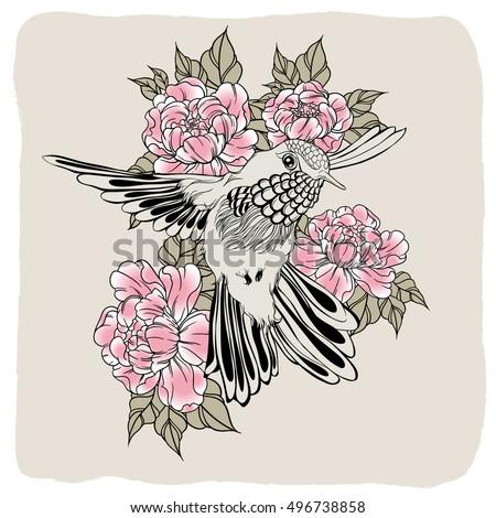 hand drawn flying humming bird