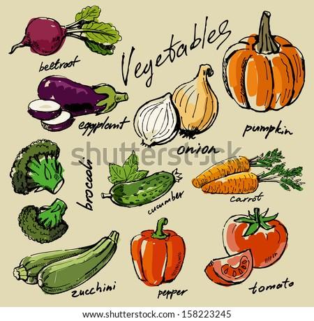 hand drawn fresh color vegetables on beige #158223245