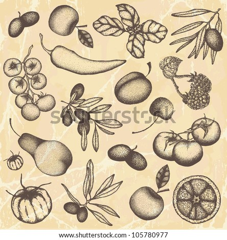 Hand drawn fruits and vegetable set
