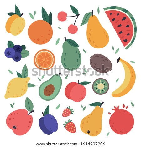 Hand drawn fruits. Doodle harvest, citrus, avocado and apple, natural vegan sweet summer fruits. Tropical organic fruit, delicious kitchen food. Isolated signs vector illustration set