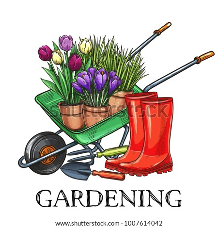Hand drawn gardening banner. Wheelbarrow, flowers, rubber boots and garden tools in a sketch style. Vector illustration.