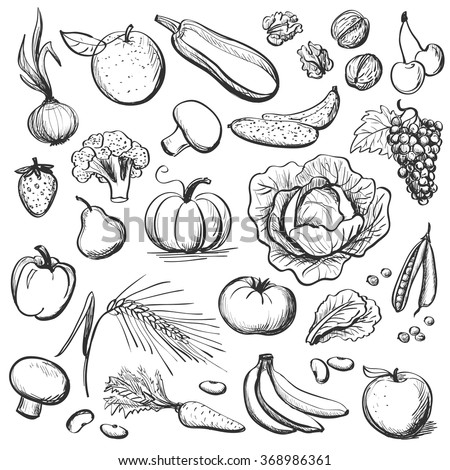 Hand drawn healthy Eating #368986361
