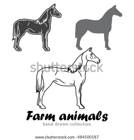 Hand Drawn Horse Silhouette Farm Animals Vector Illustration Line