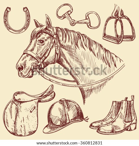 hand drawn horse with bridle...