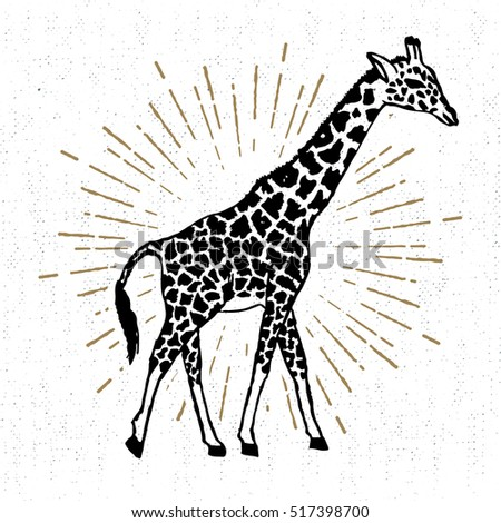 Hand drawn icon with textured giraffe vector illustration.