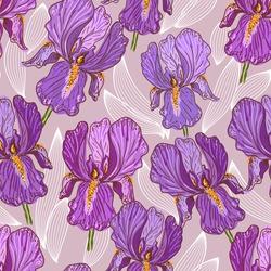 Hand drawn illustration of a purple iris