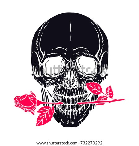 Hand Drawn Illustration Of Anatomy Human Skull With A Rose In His