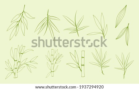 Hand drawn illustration with bamboo stem and leaves. Set of bamboo tree leaves. Hand drawn botanical collection. Silhouettes and shapes of bamboo plants for design.